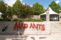 2007 TRF: Mad Ants