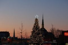 Parkview Field Christmas Tree