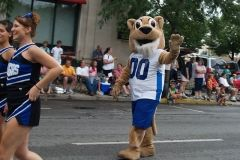 University of Saint Francis mascot