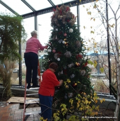 2015/11/16: Tree trimming at the Botanical Conservatory