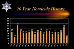 20 year Homicide History