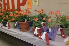 School Children's Flower and Vegetable Association Blue Ribbon Show